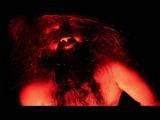 Trollfest - Professor Otto (2017) (Folk Metal)