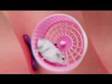 TVETH - RAIDERS (feat. JEEMBO) - ZION