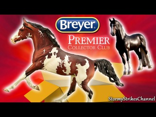 Unboxing and Review: Yasmin Django ~ Premier Club Stablemate Breyer Models