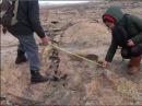 Следы 10 метрового человека в плавленом граните Казахстан