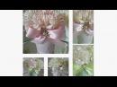 DIY  VICTORIAN 3 PIECE WEDDING CENTERPIECE / WEDDING, BRIDAL SHOWER GIFTS