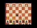 Курс по дебюту Гробу за черных. Заказ курса по шахматному дебюту