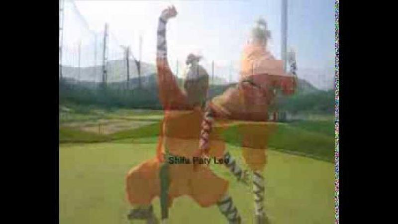 Shaolin Tiger 少林南拳 Wong Fei Hung Black Tiger Claw Garras de Tigre Negro by Paty Lee