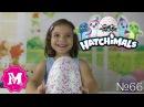 MY HATCHIMALS ! Хетчималс Интерактивная игрушка Дракоша в яйце вылупляющийся от Mika Miracle !