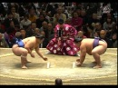 Январский турнир по Сумо 2014, 4-6 дни Хатсу Басё Токио Hatsu Basho Tokyo