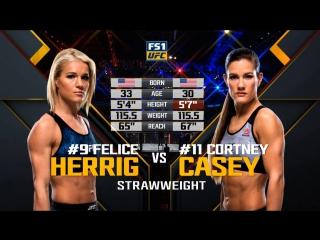 Ufc 218 felice herrig vs cortney casey