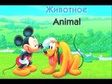 DISNEY English - We love animals / Мы любим животных - Английский малышам | Сезон 1 Эпизод 5