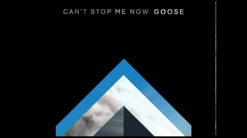 GOOSE / CAN'T STOP ME NOW the BLOODY BEETROOTS rmx