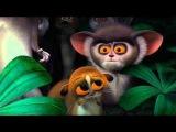 Madagascar - Привет вам, гигантские морды! )
