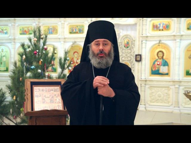 Рождественское поздравление епископа Калачевского и Палласовского Иоанна_г. Во...