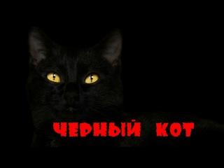 Трандафиловы - Чёрный кот