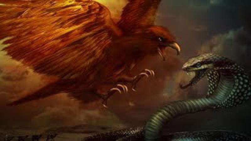 Животные! Приколы! Орел против кобры