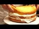 Бисквит для торта Бисквит рецепт Бисквитный торт с кремом Торт из бисквитных коржей