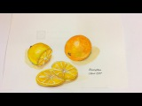 how to paint lemon and orange in watercolors (speed painting)
