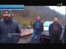Лісівники Тячівщини забороняють журналістам знімати в тамтешніх лісах