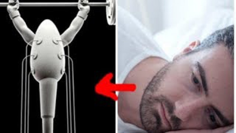 How Sleep Affects Sperm Count By Healthy Lifestyle TV