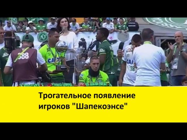 Игроки Шапекоэнсе вышли на первый матч после трагедии