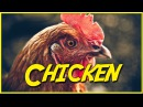 Chicken Epic NPC Man Skyrim Zelda MMO Video Game Logic Viva La Dirt League VLDL