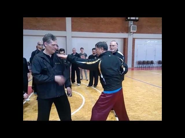 Быстрее кобры - мега быстрое боевое искусство Тонг Бей Куан