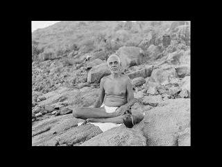 Шри Рамана Махарши - 15. Видения и психические силы