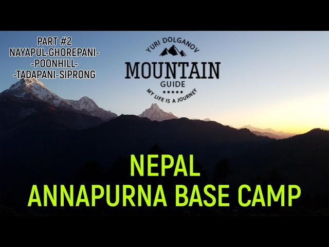 Непал .Часть 2. Обзор трека к базовому лагерю Аннапурны. Nayapul-Poon Hill-Siprong. Nepal ABC trek