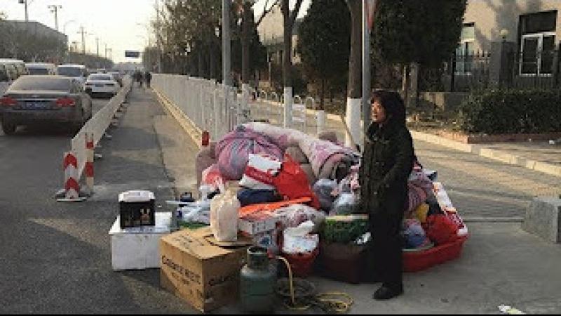 """张博树:官本位、低端人口与严寒中的 冻民"""" YouTube"""