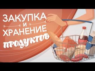 Правила закупки и хранения еды [Рецепты Bon Appetit]