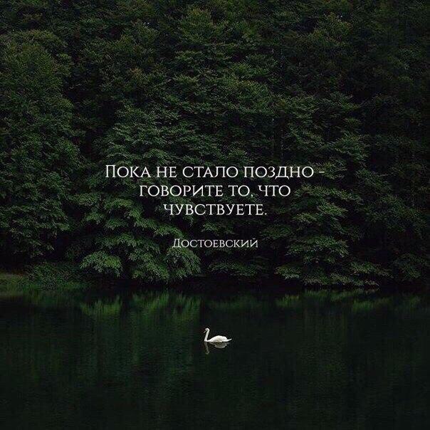 фото из альбома Саши Петрова №10