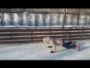 Burpy iceskating