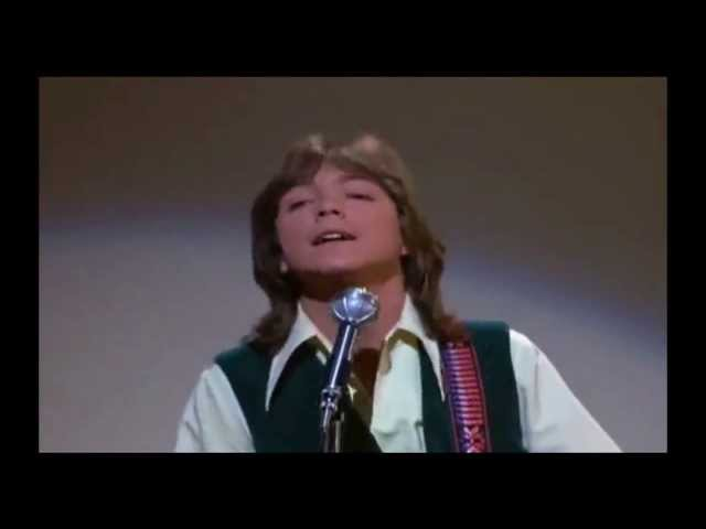 DAVID CASSIDY and Partridge Family ~