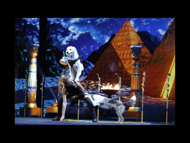 Sara and Hero: Dogs And Trainer Deliver Incredible Tricks - America's Got Talent 2017