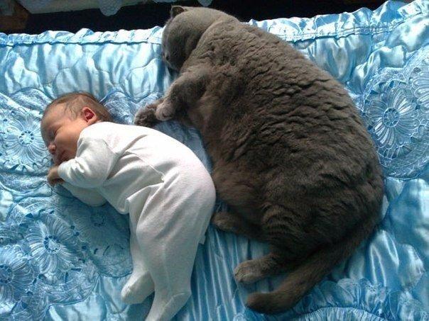 Спят усталые детишки =)