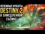 НЕЗЕМНЫЕ КРАСОТЫ DESTINY 2 в замедленной съёмке (Таймлапс)