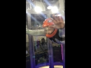 Aero tube 🚀