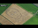 Land art_ Giant Putin portrait emerges on cornfield ahead of G20 talks