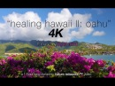 1HR 4K RELAXATION Healing Hawaii II Oahu ft Music by LIQUID MIND