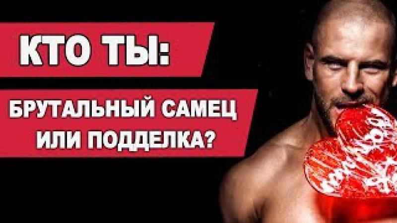 КТО ТЫ БРУТАЛЬНЫЙ САМЕЦ ИЛИ ПОДДЕЛКА Мужской вебинар Павла Ракова