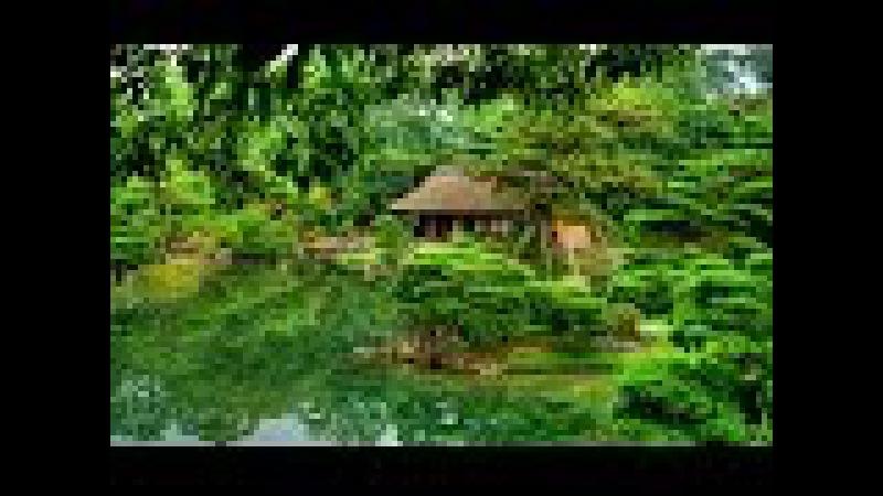 Япония. Киото - Четыре сезона красивой древней столицы. Релакс