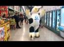 Танцующая корова снова танцует