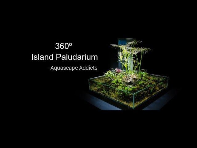 360º Island Paludarium - Aquascape Addicts