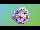 Modular Origami Model (Make a paper Flower Ball)