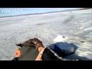 Тюлень на рыбалке Клюет хоть