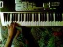 Wilder wein on keyboard- Rammstein