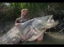 Рыбалка на трофейного сома Гиганстский сом Якуб Вагнер Франция часть 1