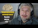 Формирование неокортекса Сергей Савельев Вынос мозга 21