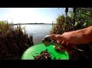 Пьяные На Рыбалке Алкаши Рыбаки Видео Приколы Приколы На Рыбалке Видео
