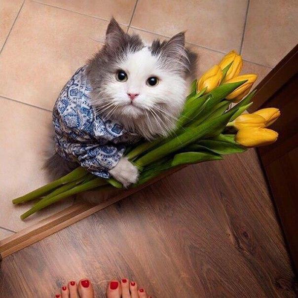 Девоньки Дорогие!))  Поздравляю Вас с таким замечательным Днём 8 Марта