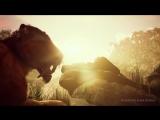 Ancestors_ The Humankind Odyssey  трейлер