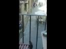 Полиция ищет террориста Барса