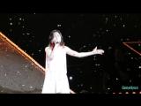 【Fancam】170520 TaeYeon-Curtain Call+Ending@PERSONA in Taiwan